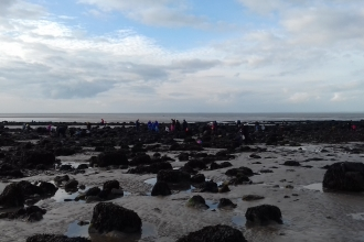 Rockpools at Half Moon Bay, Heysham