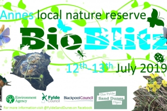 Fylde BioBlitz 12th/13th July 2019