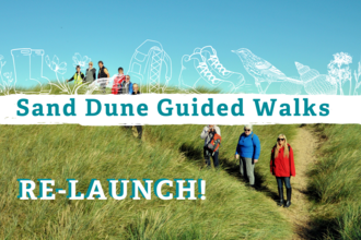 Sand Dune Guided Walks - Re-Launch