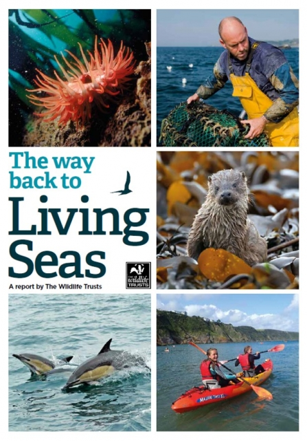 The way back to Living Seas