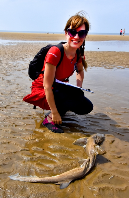 Sally with smooth hound on Formby beach. Photo: Chris Vere