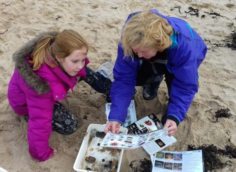 Rockpoolers examine their finds