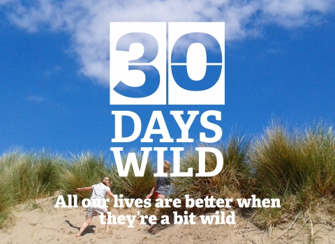 30 Days Wild - play on the beach